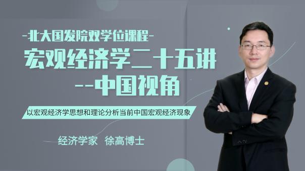 经济学家徐高|宏观经济学二十五讲--中国视角