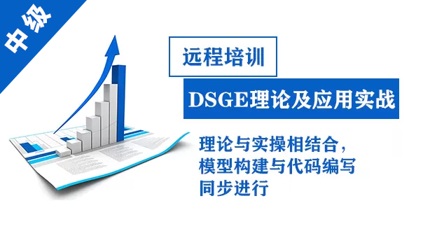 DSGE理论及应用实战-中级